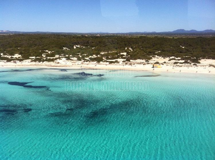 Es Trenk Mallorca