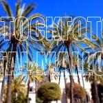 La Lonja Altstadt Palma de Mallorca